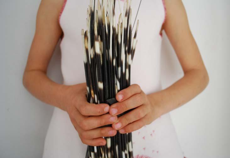 My Marrakesh quills
