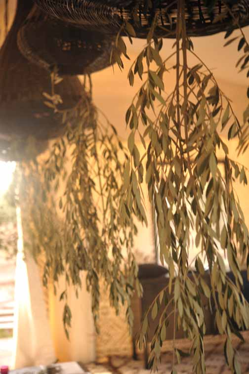 My Marrakesh blog tent decoration