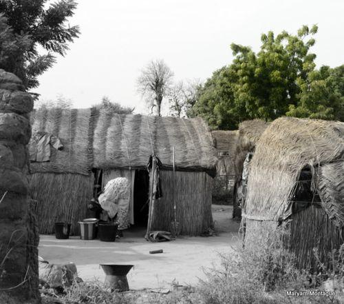 Mali huts