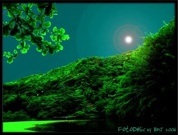 Paradise_2_3