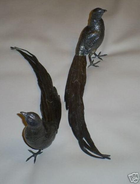Peacock_4_3